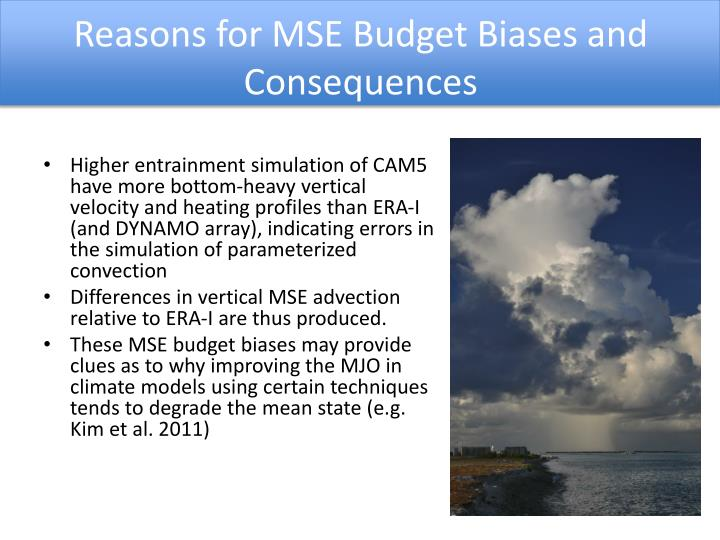 Reasons for MSE Budget Biases and Consequences