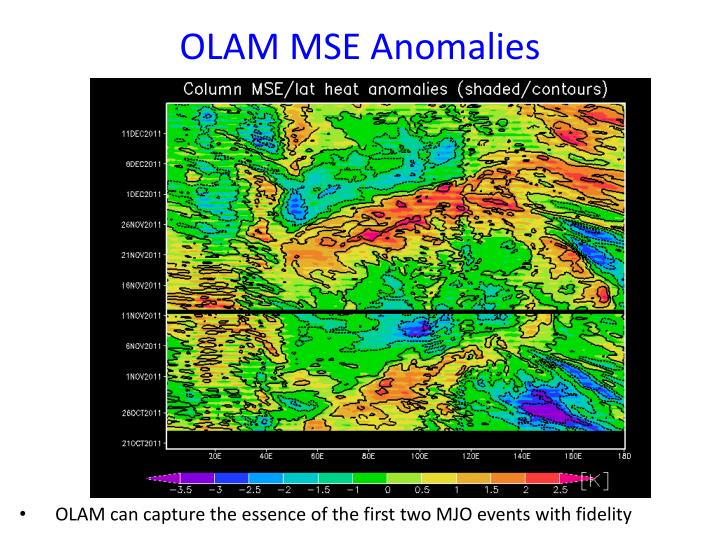 OLAM MSE Anomalies