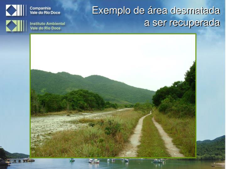 Exemplo de área desmatada