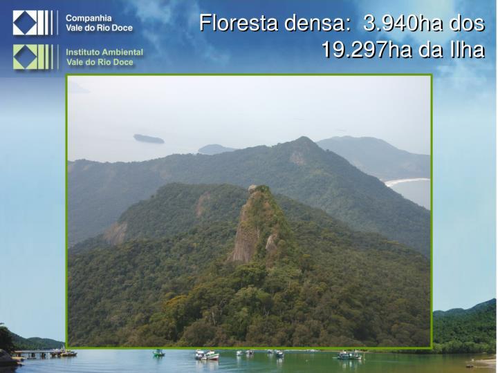 Floresta densa:  3.940ha dos 19.297ha da Ilha