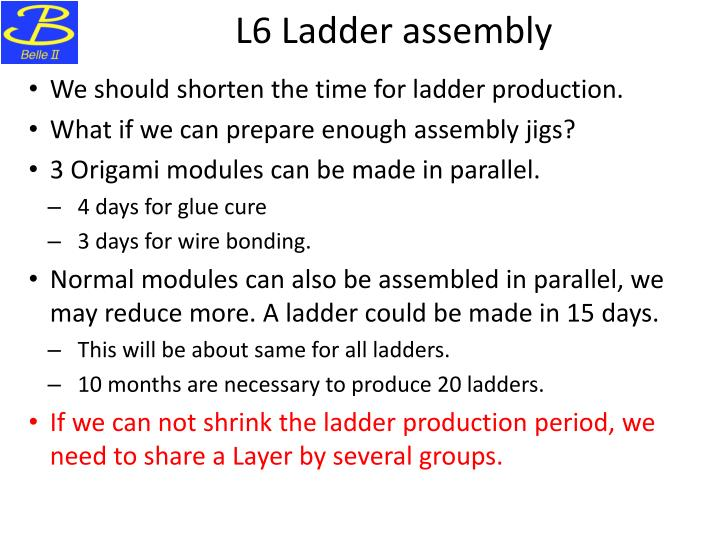 L6 Ladder assembly