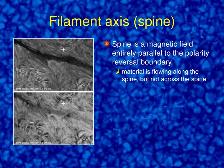 Filament axis (spine)