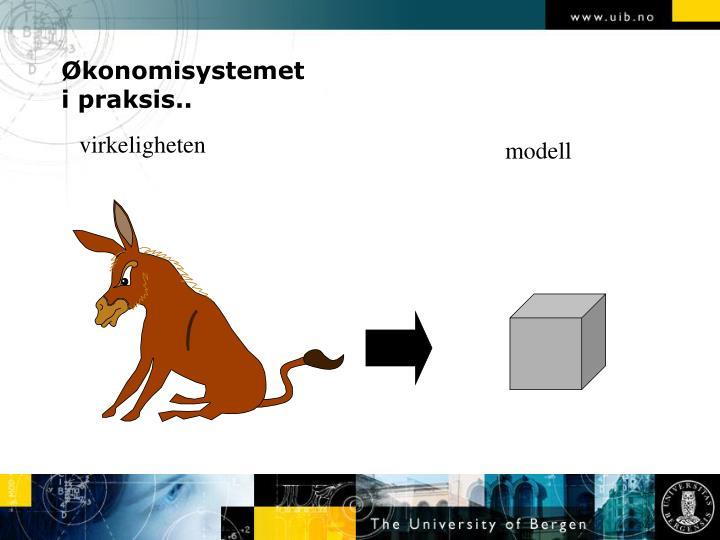 Økonomisystemet