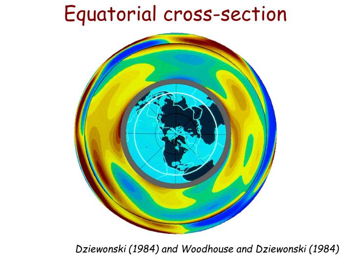 Equatorial cross-section