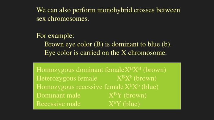 We can also perform monohybrid crosses between sex chromosomes.