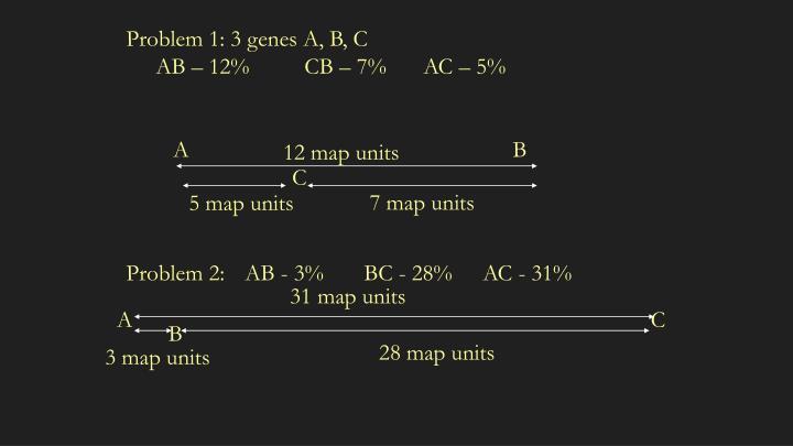 Problem 1: 3 genes A, B, C