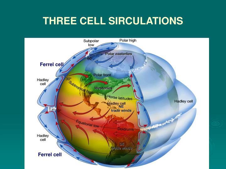 Ferrel cell