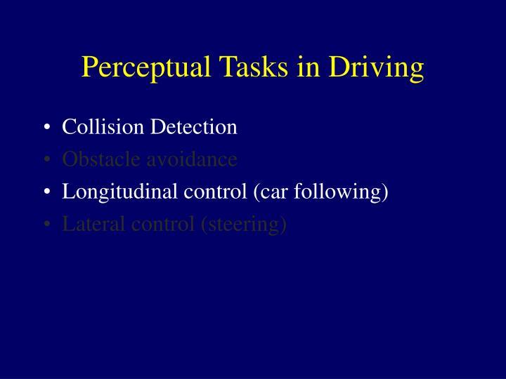 Perceptual Tasks in Driving