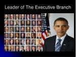leader of the executive branch