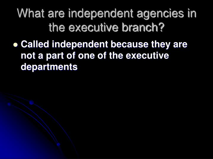 What are independent agencies in the executive branch?