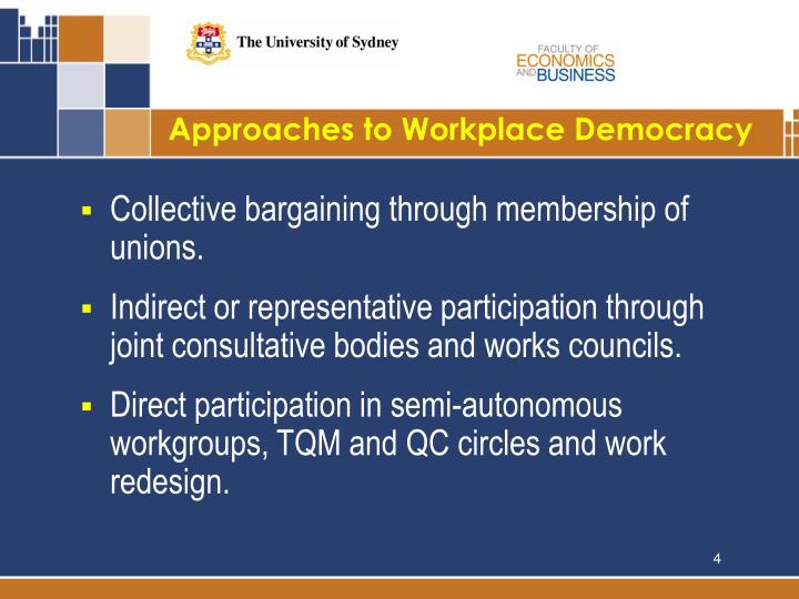 Approaches to Workplace Democracy