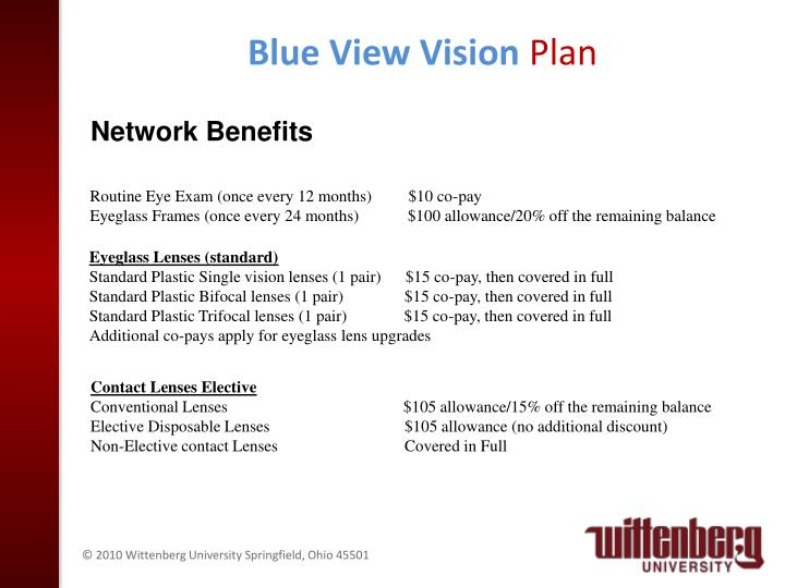 Blue View Vision