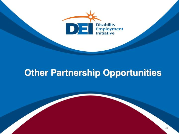 Other Partnership Opportunities