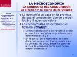 la microeconom a la conducta del consumidor la elecci n y la teor a de la utilidad