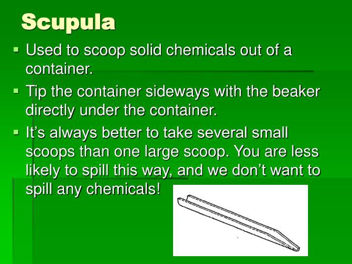 Scupula