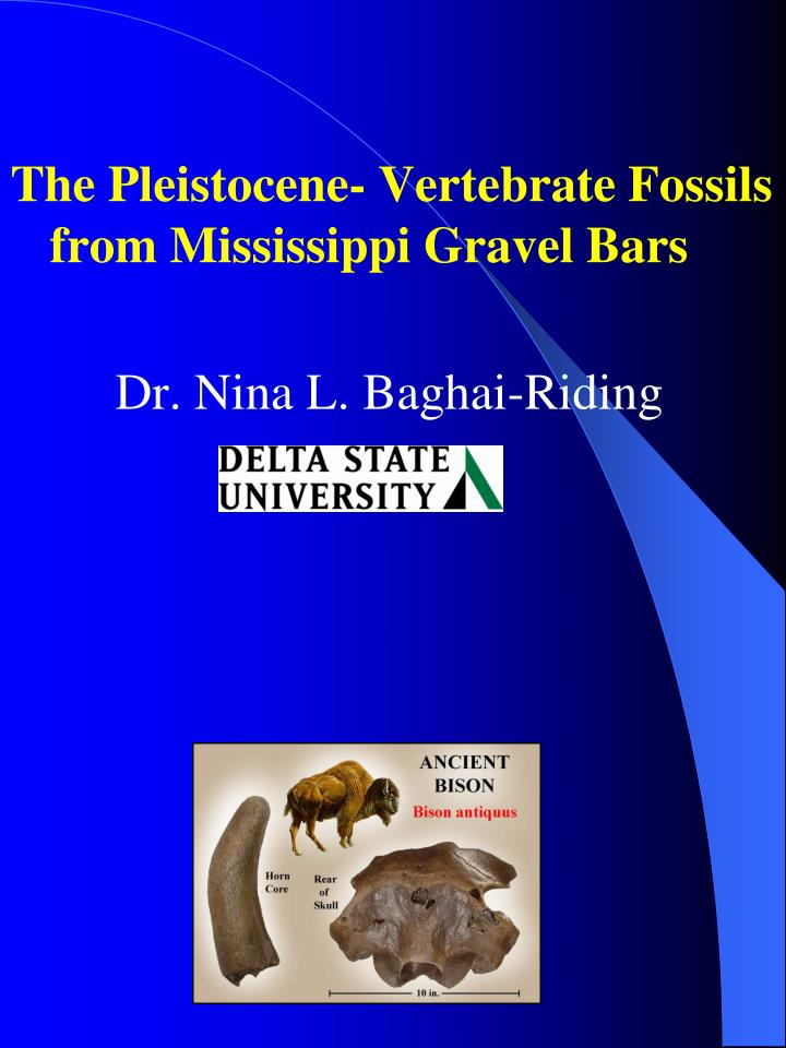 The Pleistocene- Vertebrate Fossils from Mississippi Gravel Bars