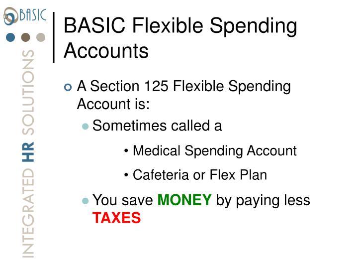 BASIC Flexible Spending Accounts