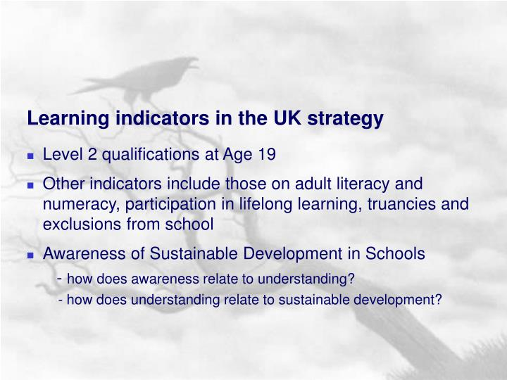 Learning indicators in the UK strategy