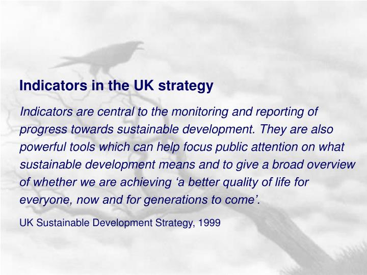 Indicators in the UK strategy