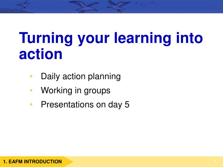Turning your learning into action