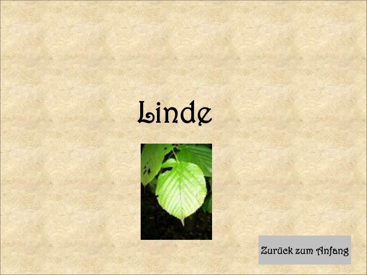 Linde