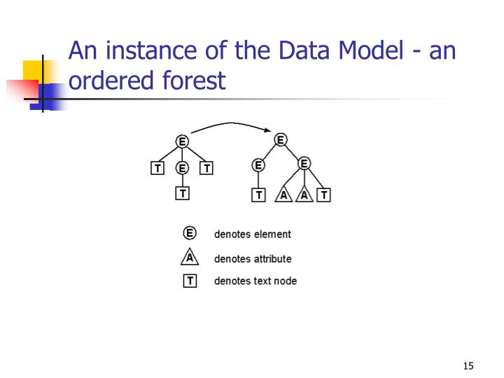 An instance of the Data Model - an ordered forest