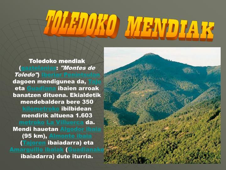 TOLEDOKO MENDIAK