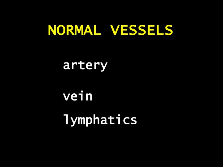 NORMAL VESSELS