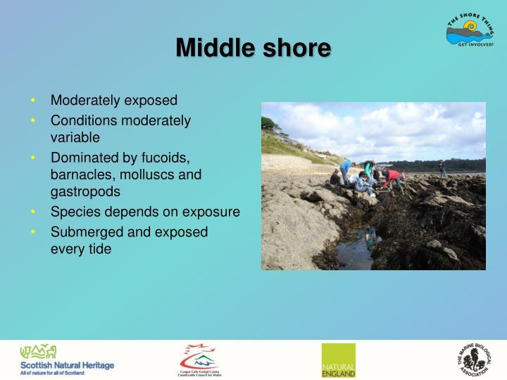 Middle shore