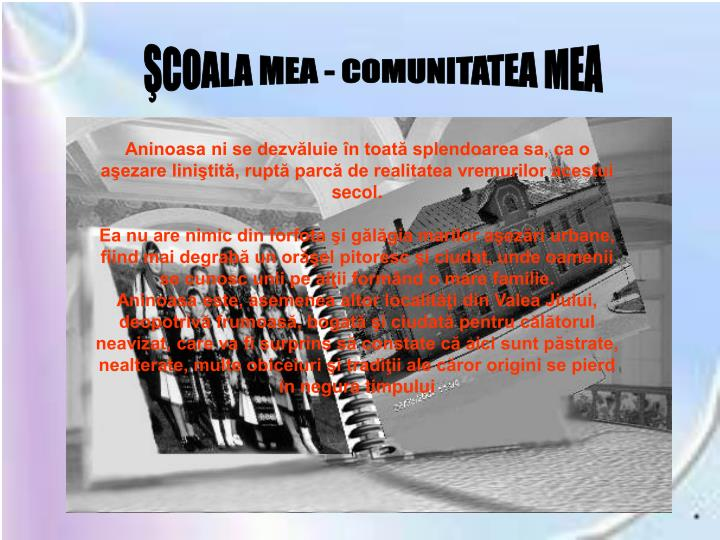ŞCOALA MEA - COMUNITATEA MEA