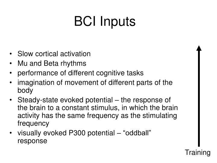 BCI Inputs