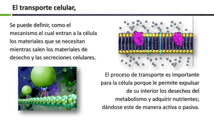 El transporte celular,