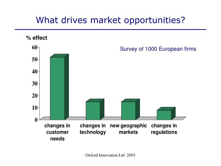 What drives market opportunities?