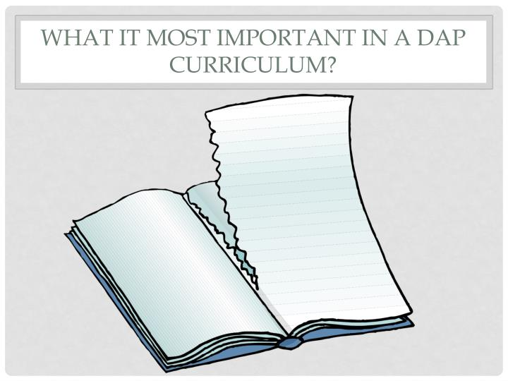 WHAT IT Most Important In a DAP Curriculum?