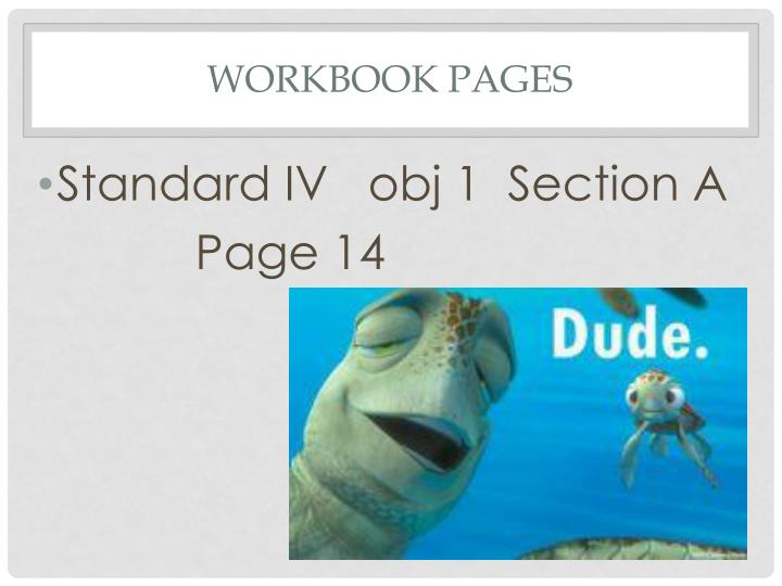 Workbook Pages