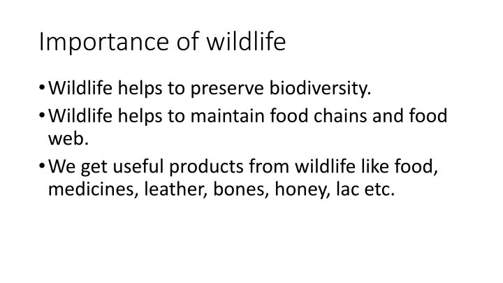 Importance of wildlife