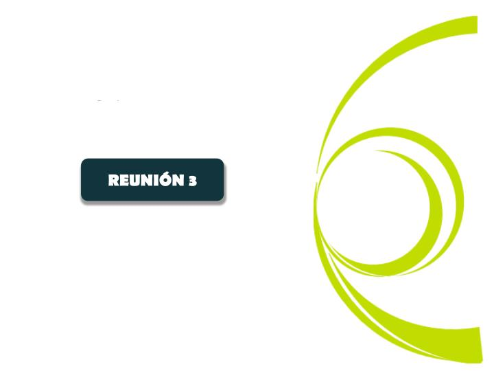 REUNIÓN 3