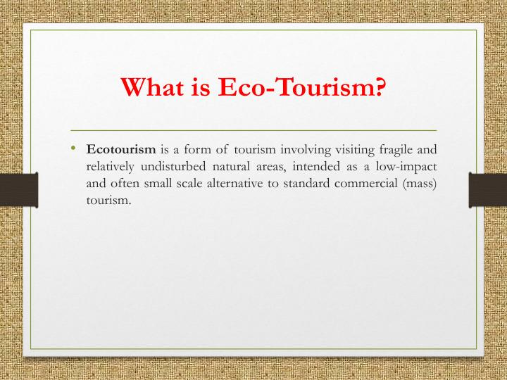 What is eco tourism