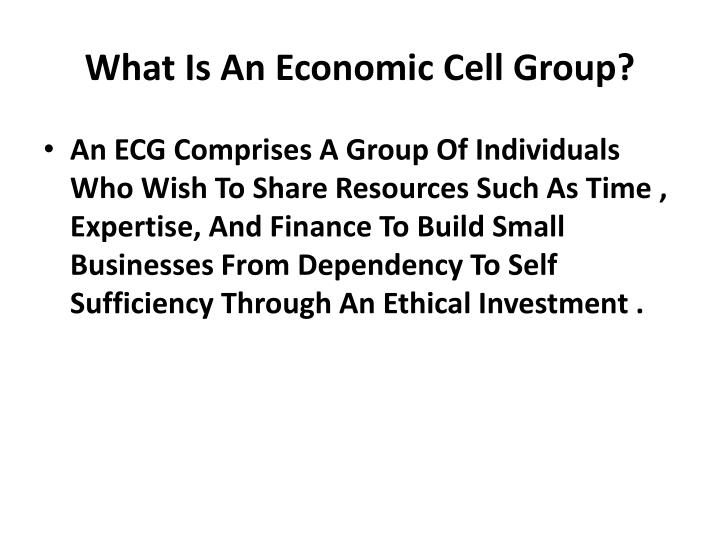 What Is An Economic Cell Group?