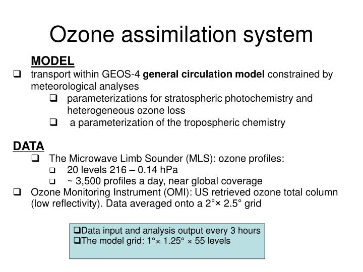 Ozone assimilation system