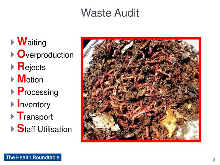 Waste Audit