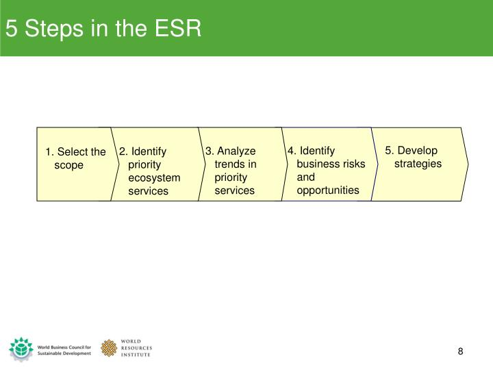5 Steps in the ESR