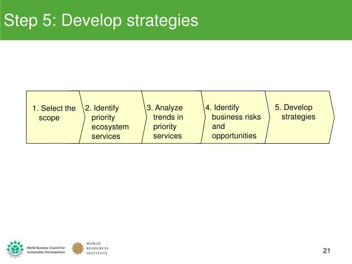 Step 5: Develop strategies