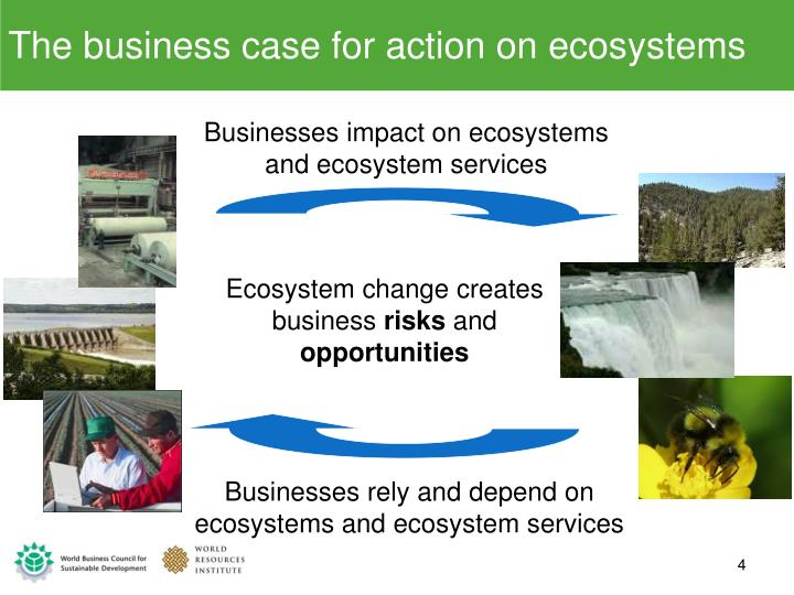 The business case for action on ecosystems