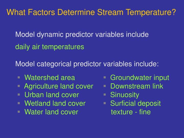 What Factors Determine Stream Temperature?