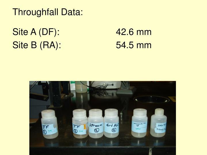 Throughfall Data:
