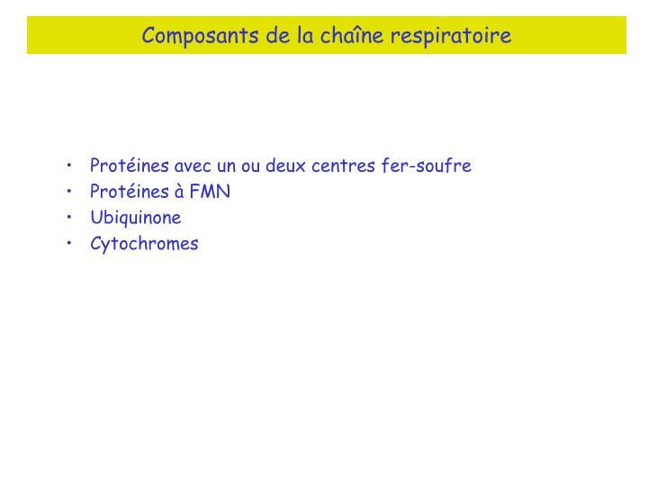 Composants de la chaîne respiratoire