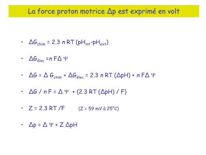 La force proton motrice ∆p est exprimé en volt