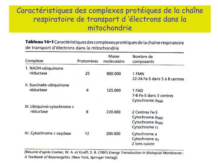 Caractéristiques des complexes protéiques de la chaîne respiratoire de transport d'électrons dans la mitochondrie