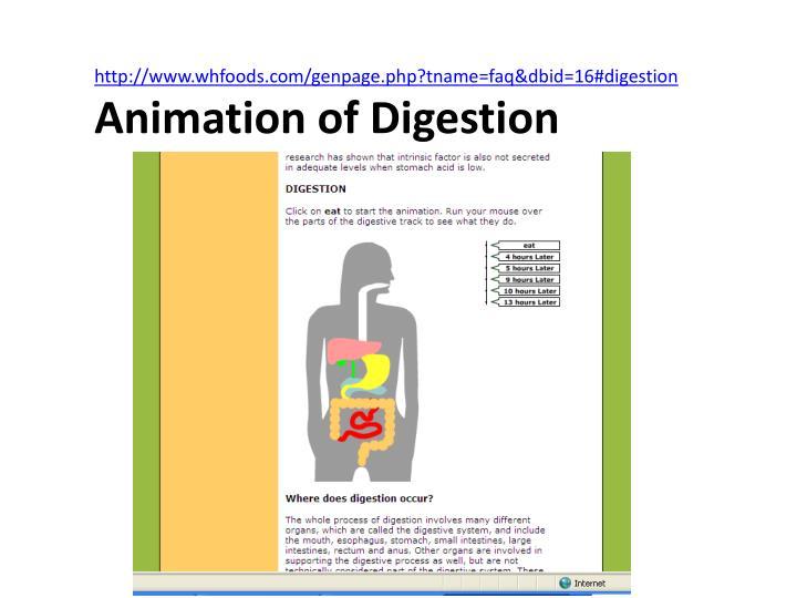 http://www.whfoods.com/genpage.php?tname=faq&dbid=16#digestion